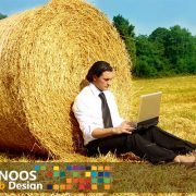 کسب و کار روستایی چیست