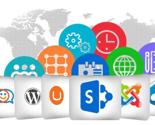انواع سیسیتم ها مدیریت محتوا در طراحی سایت