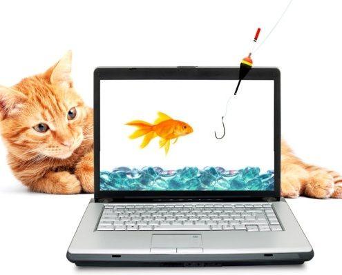 آموزش ورود محصولات در فروشگاه اینترنتی ووکامرس